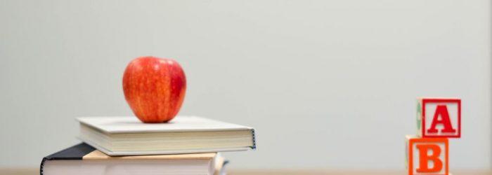 Inskolning och lärande